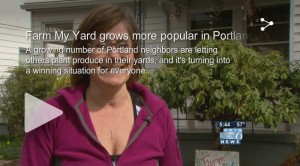 KOIN Story on Farm My Yard
